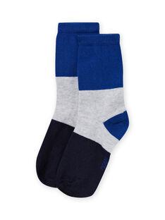Meias azul tricolor menino MYOJOCHOC1 / 21WI0217SOQ701
