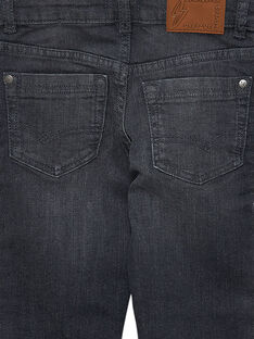 Calças de ganga regular cinzento JOESJEREG2 / 20S90268D29K004